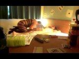 Amateurvideo 20 Jährigen im Hotel verführt Teil 1 von misstabulos555
