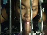 Amateurvideo Im hundezwinger! Die Erniedrigung! von sexynoy